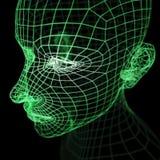 Modo verde della testa umana di Wireframe Fotografia Stock Libera da Diritti