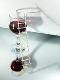 Modo wine Immagini Stock