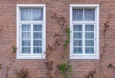 modren a janela no fundo da parede de tijolo vermelho Fotografia de Stock Royalty Free