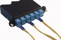 Module de fibre de LC Image libre de droits