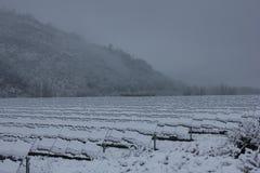 Modules photovoltaïques couverts de neige Photographie stock