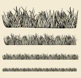 Modules variables d'herbe. Photos stock