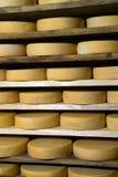 Moduli di maturazione del formaggio Immagini Stock Libere da Diritti