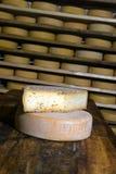Moduli di maturazione del formaggio Fotografia Stock