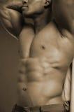 Modulo maschio Fotografia Stock