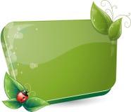 Modulo verde con i fogli ed il ladybug Fotografie Stock