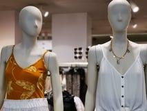 Mody atrapa - sezonowa odzie? dla kobiet zdjęcie royalty free