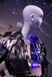 mody żeński mannequin modela sprzedaży sklepu okno Obraz Royalty Free