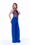 Mody kobiety ciała kształta stylowej perfect brunetki włosiana odzież błękitny p Zdjęcia Stock