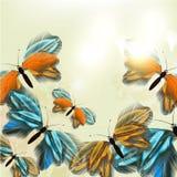 Mody kwiecisty tło z motylami Zdjęcie Royalty Free
