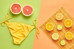 Mody lata plaży set owoce tropikalne minimalizm obraz stock