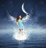 Mody nocy czarodziejka Obrazy Stock