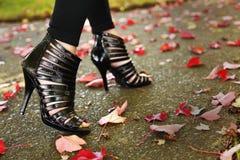 mody noga Fotografia Royalty Free