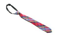 Mody szyi krawat Fotografia Stock