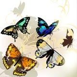 Mody tło z wektorowymi motylami Zdjęcie Royalty Free
