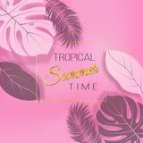 Mody tropikalny różowy tło z egzotycznymi liśćmi Obraz Stock