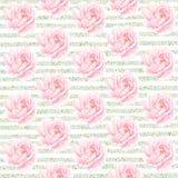 mody wzoru lampasa miastowy wektor Peoni Różowy tło Peonia kwiatu błękita tło Fotografia Stock