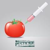 Modyfikacja pomidorowa wektorowa ilustracja royalty ilustracja