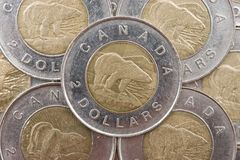 Moeda canadense Fotografia de Stock