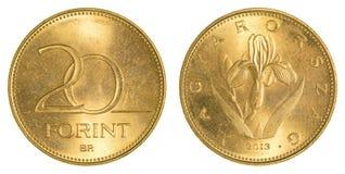 Moeda da forint de 20 Hungarian imagem de stock