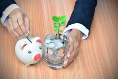 Moeda da gota do homem de negócios no mealheiro e moedas com árvore dentro Imagem de Stock