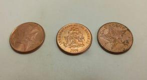 Moeda das moedas de um centavo do Bahamas imagens de stock royalty free