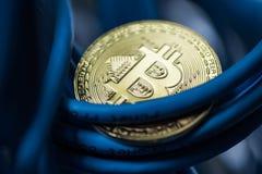 A moeda de brilho do bitcoin no azul cabografa o close up Cryptocurrency, escavação Imagem de Stock