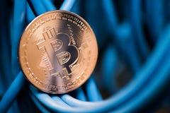 A moeda de brilho do bitcoin no azul cabografa o close up Cryptocurrency, escavação Foto de Stock Royalty Free