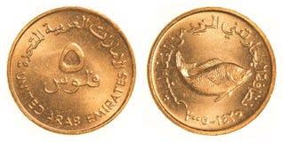 Moeda de 5 fils de Emiratos Árabes Unidos Fotos de Stock