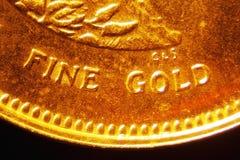 Moeda de ouro Imagens de Stock Royalty Free