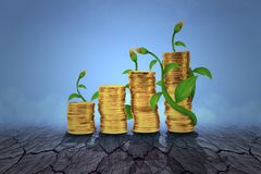 A moeda de ouro para crescer acima o conceito com palnts cresce acima no solo seco imagens de stock royalty free