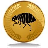 Moeda de ouro - pulga ilustração do vetor