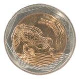 Moeda dos pesos de Colômbia Fotografia de Stock Royalty Free