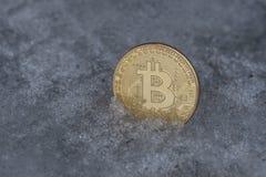 Moeda dourada do bitcoin no gelo fotografia de stock royalty free