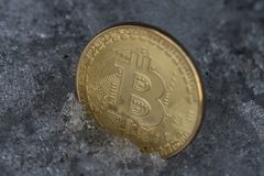 Moeda dourada do bitcoin no gelo fotos de stock royalty free