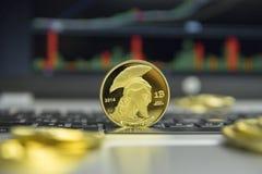 Moeda dourada do bitcoin do titã com as moedas de ouro que encontram-se ao redor em um teclado de prata do gráfico da carta do po imagem de stock royalty free