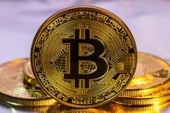 Moeda dourada física do bitcoin de Cryptocurrency no backgrou colorido Foto de Stock