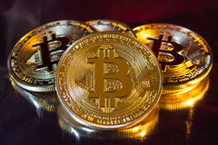Moeda dourada física do bitcoin de Cryptocurrency no backgrou colorido Imagem de Stock Royalty Free