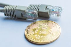 A moeda e a rede de ouro de Bitcoin prendem o cabo do cabo de remendo dos conectores imagens de stock royalty free