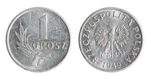 Moeda polonesa velha da moeda de um centavo (1949 anos) Imagens de Stock Royalty Free