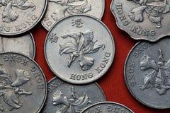 Moedas de Hong Kong Imagem de Stock Royalty Free