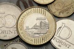 Moedas de Hungria Foto de Stock