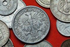 Moedas do Polônia comunista Fotografia de Stock