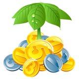 Moedas do vetor sob o guarda-chuva das folhas Imagens de Stock Royalty Free