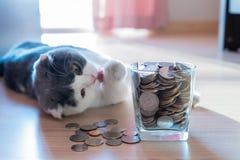 Moedas no dinheiro da economia do frasco do dinheiro Foto de Stock