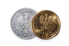 Moedas polonesas de denominações diferentes isoladas em um fundo branco Lotes de moedas polonesas do centavo Fotos macro das moed fotografia de stock