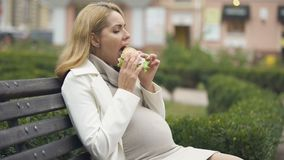 Moeder-aan-eet het schadelijke park van de hamburgerzitting, hoogte - vette voeding, ongezonde kost stock videobeelden