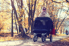 Moeder in de herfst van de parkwandelwagen Stock Fotografie