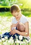 Moeder die haar baby in aard groene weide met witte bloem voeden stock foto's