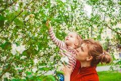 Moeder en dochter in bloemtuin Stock Afbeeldingen